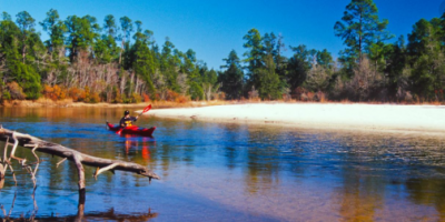 Top Hiking Spots in Florida